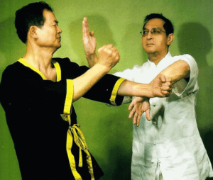 GM Leung Ting and GM Cheng Chuen Fun