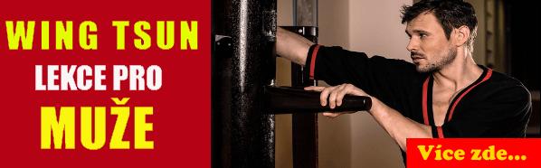 WT-lekce-pro-muze kung fu